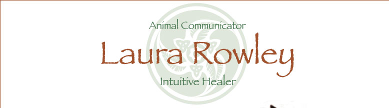 Laura Rowley - Intuitive Healer