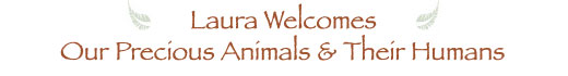 Laura Welcomes Our Precious Animals and Their Humans